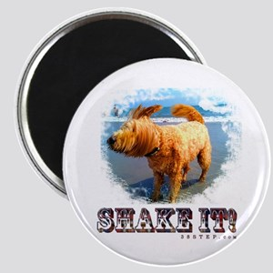 Shake It! Magnet