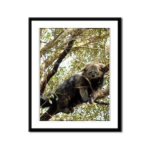 Bearcat Framed Panel Print