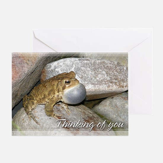 Bullfrog Thinking of You Card 5x7