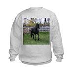 Baron Trot Kids Sweatshirt