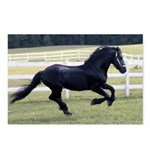 Baron Galloping Postcards (Package of 8)