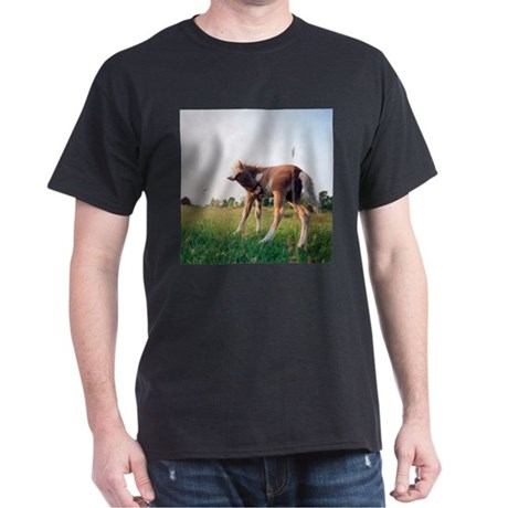 Prince Black T-Shirt