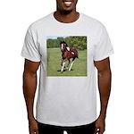 Pinto Foxtrotter Ash Grey T-Shirt