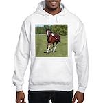 Pinto Foxtrotter Hooded Sweatshirt