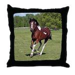 Pinto Foxtrotter Throw Pillow
