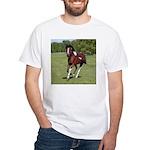 Pinto Foxtrotter White T-Shirt