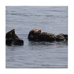 Sea Otters with Baby Tile Coaster