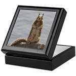 California Ground Squirrel Keepsake Box