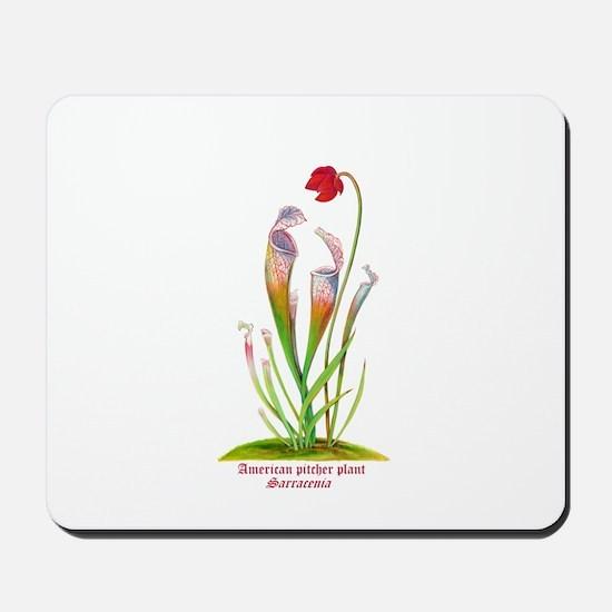 American Pitcher Plant Mousepad