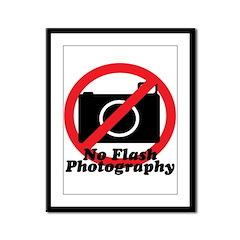 No Flash Photography Framed Panel Print