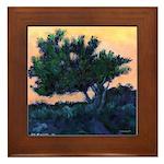 Sunset Torrey Pines Framed Tile