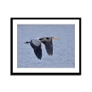 Heron Flying Framed Panel Print
