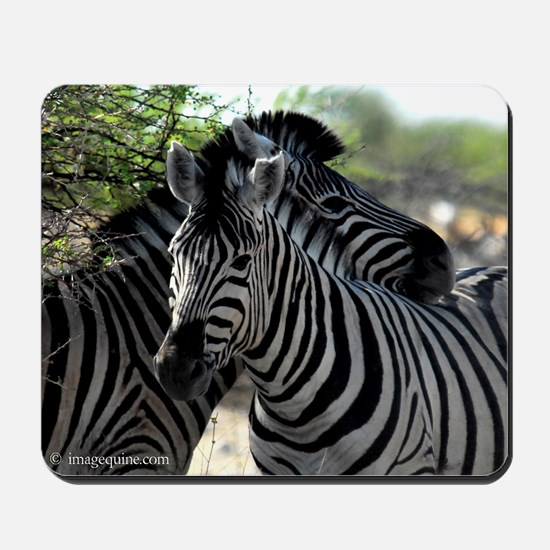 Africa game Mousepad