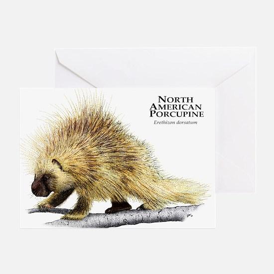 North American Porcupine Greeting Card