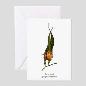 Kelp Crab Greeting Card