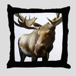 Moose Photos Throw Pillow