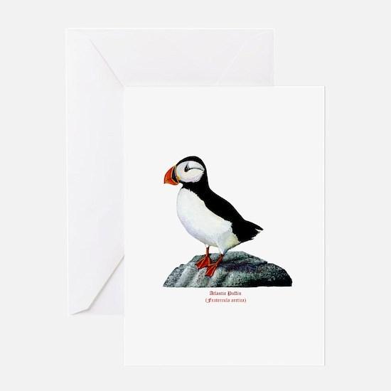 Atlantic Puffin Greeting Card