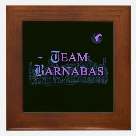 Team Barnabas Color Framed Tile