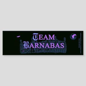 Team Barnabas Color Sticker (Bumper)