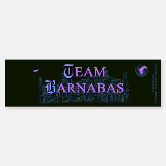 Team Barnabas Color Sticker (Bumper)