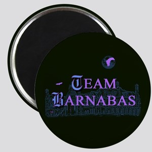Team Barnabas Color Magnet