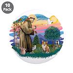 St. Francis #2 / Corgi (Pem) 3.5