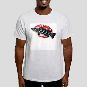 Kendalli Ash Grey T-Shirt