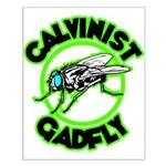 Calvinist Gadfly Small Poster