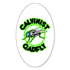 Calvinist Gadfly Oval Decal