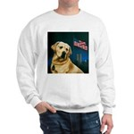 Salute to Sirius Sweatshirt