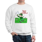 Lucky Charms Sweatshirt