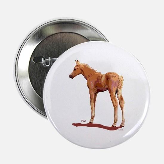 Morgan Palomino Colt Button