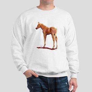 Morgan Palomino Colt Sweatshirt