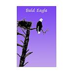 Sunset Bald Eagle Mini Poster Print