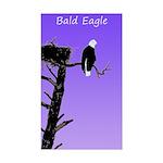 Sunset Bald Eagle Sticker (Rectangle 10 pk)