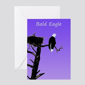 Sunset Bald Eagle Greeting Card