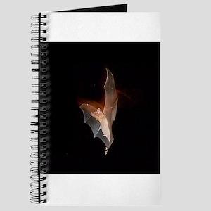 100BAT Journal