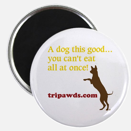 A Dog This Good Magnet