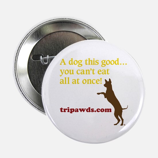 "A Dog This Good 2.25"" Button"