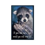 Raccoon Coat Rectangle Magnet (10 pack)