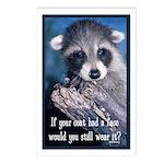 Raccoon Coat Postcards (Package of 8)