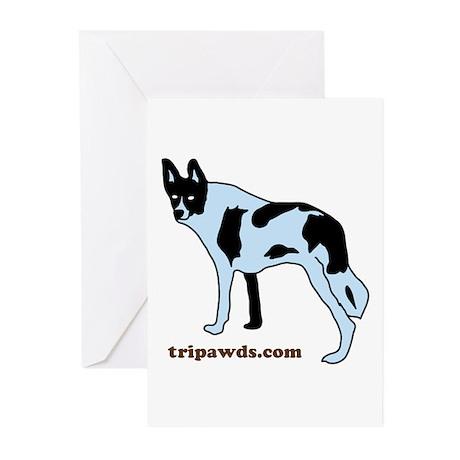Tripawds.com Greeting Cards (Pk of 10)