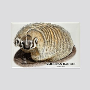 American Badger Rectangle Magnet