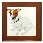 Jack Russell Terrier Painting Framed Tile
