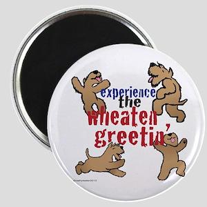 Wheaten Greetin' Magnet