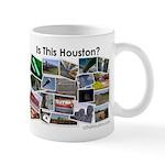 Is This Houston? Mug