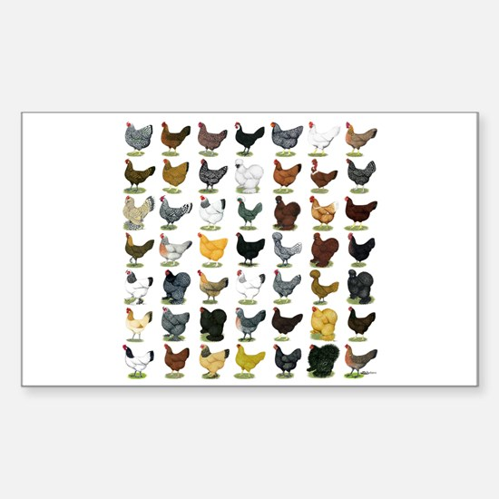 49 Hen Breeds Sticker (Rectangle)