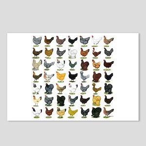 49 Hen Breeds Postcards (Package of 8)