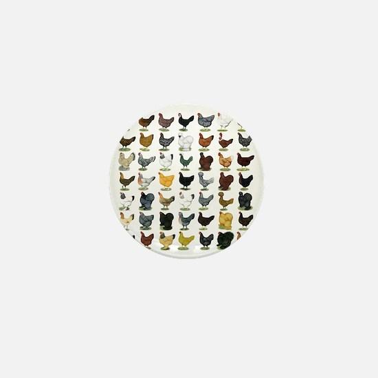 49 Hen Breeds Mini Button