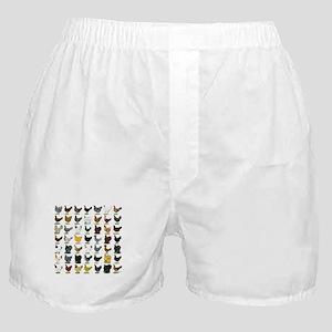 49 Hen Breeds Boxer Shorts